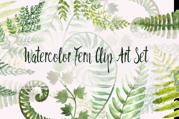 Watercolor Fern Clip Art Set example image 1