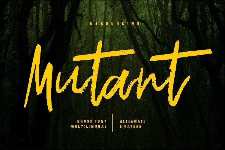 Web Font Mutant - Brush Font example image 1