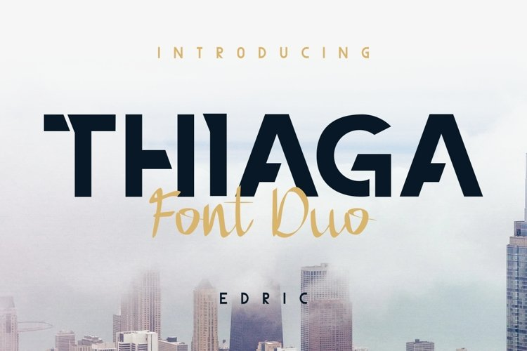 THIAGA example image 1