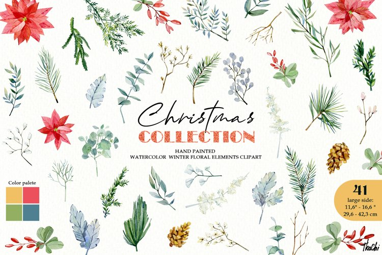 Watercolor christmas floral clipart. Pine, fir, poinsettia example image 1