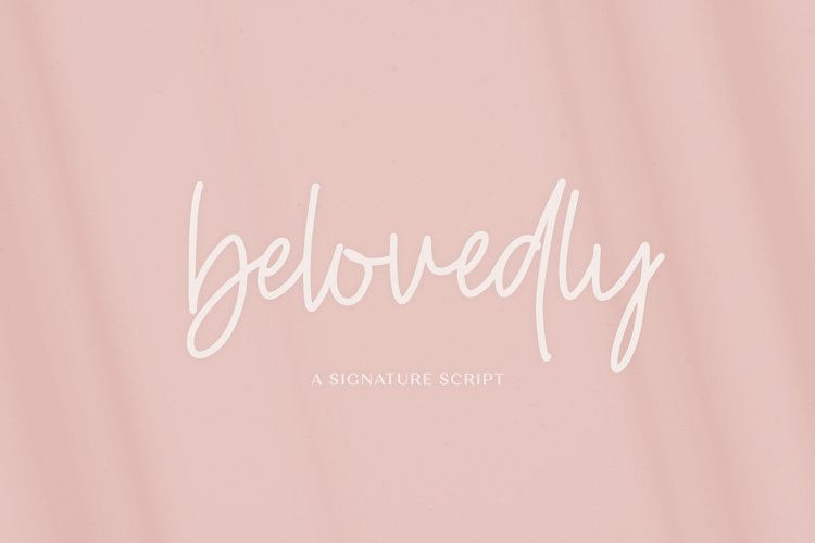 Belovedly Signature Script Font example image 1