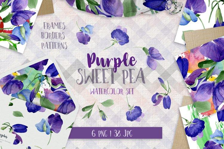 Purple sweet pea PNG watercolor flower set example image 1