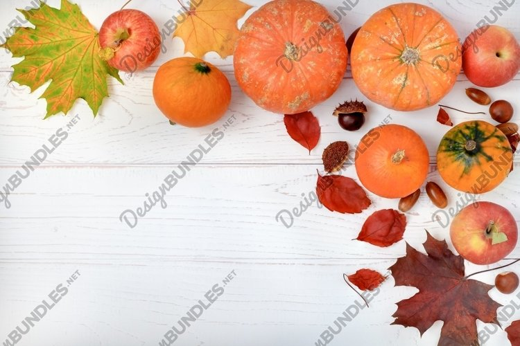 Composition of pumpkins, apples and autumn leaves. example image 1