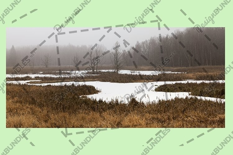 snow part of the swamp example image 1