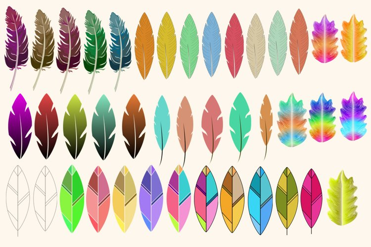 40 High Definition PNG Feathers