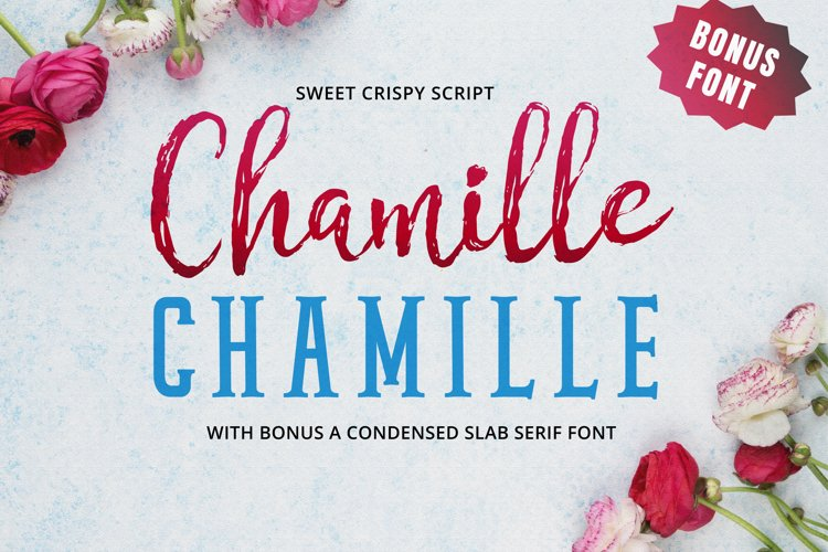 Chamille | sweet script example image 1