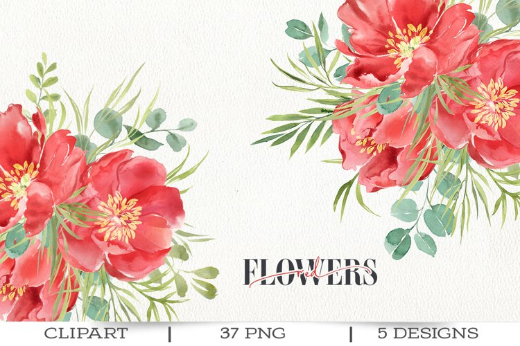 Red peonies clipart, red flowers watercolor clipart. example
