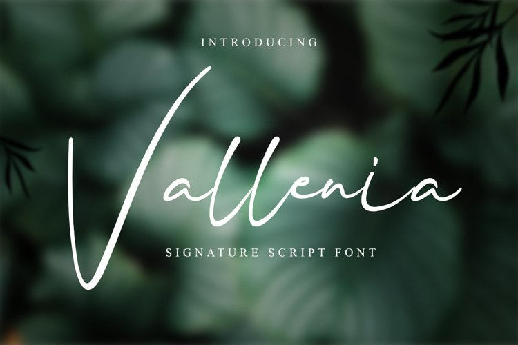 Vallenia Script example image 1
