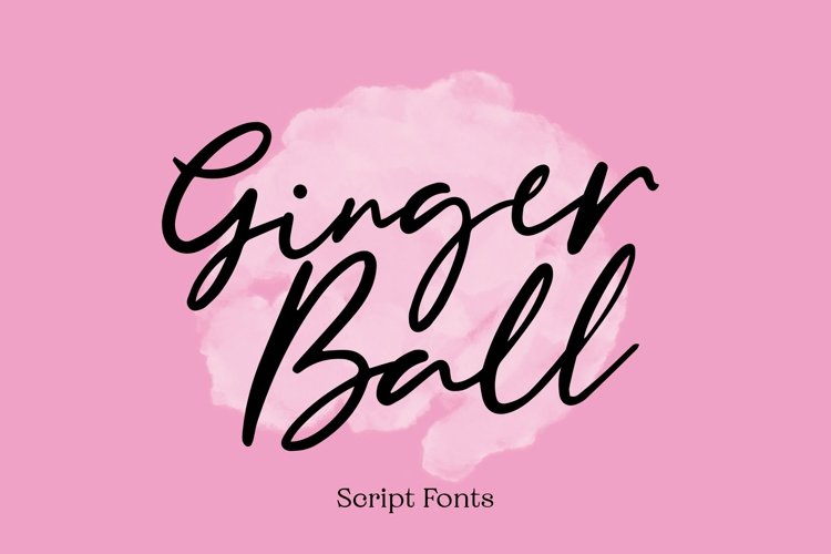 Web Font Gingerball - Script Font example image 1