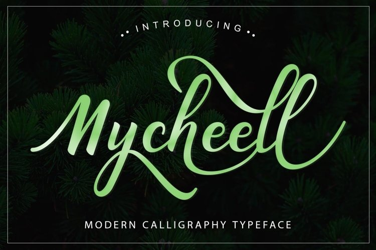 Web Font Mycheell Script example image 1