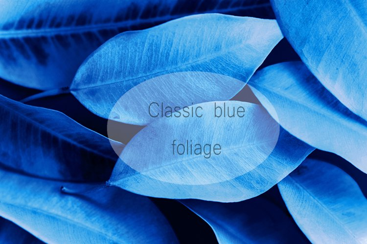 Foliage background pattern toned in dark blue example image 1