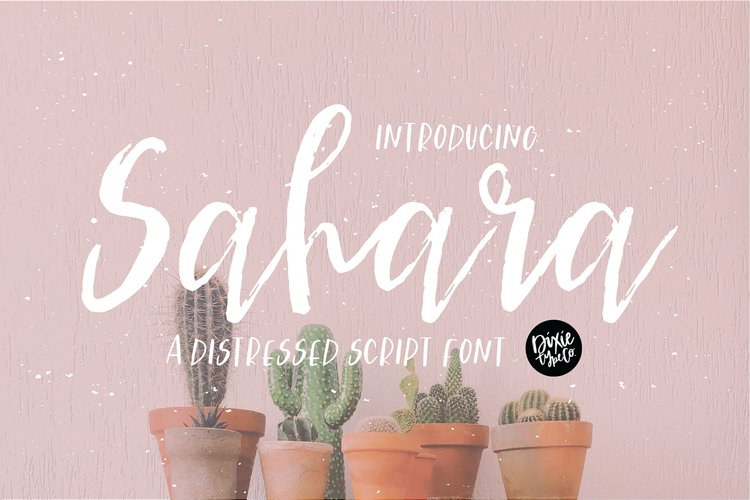SAHARA a Distressed Brush Script Font example image 1