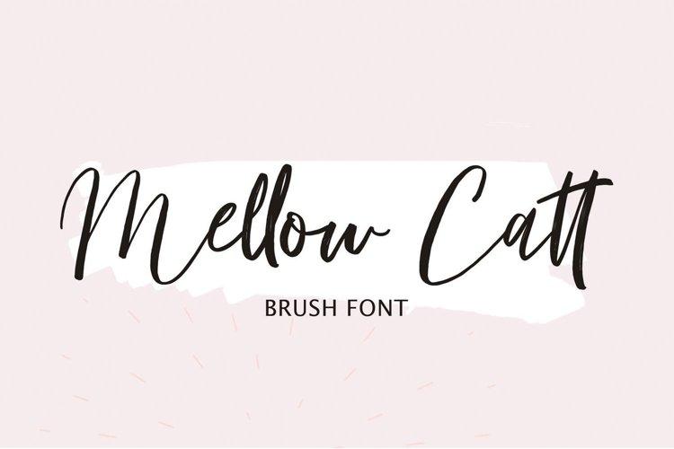 Mellow Catt   Brush Script Font example image 1
