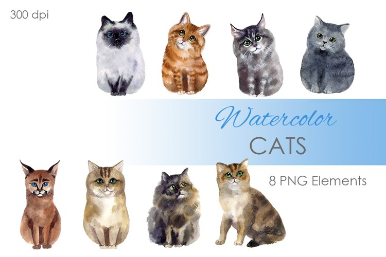 Watercolor Clipart. Cat Clipart. Digital clipart. Poster example image 1