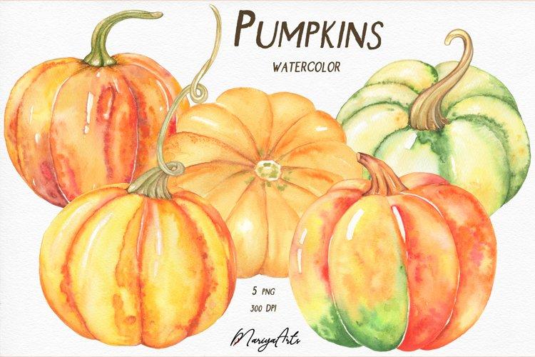 Pumpkins Clipart, Watercolor Fall, Thanksgiving, Autumn