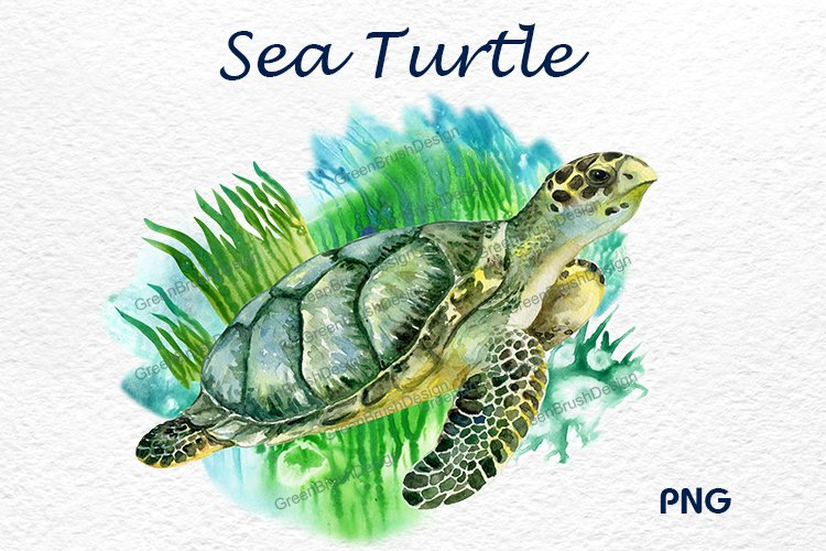 Sea turtle. Watercolor Green turtle example image 1