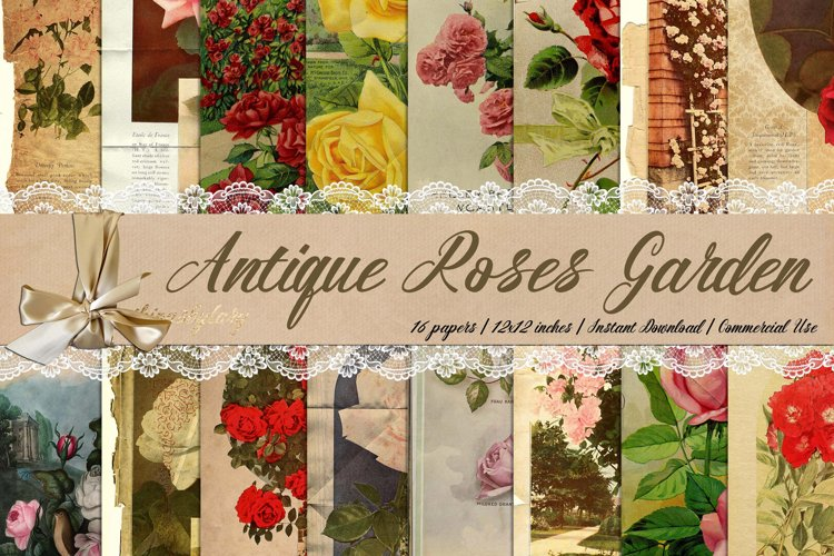 16 Antique Rose Garden Victorian Europe Digital Paper 8.5x11