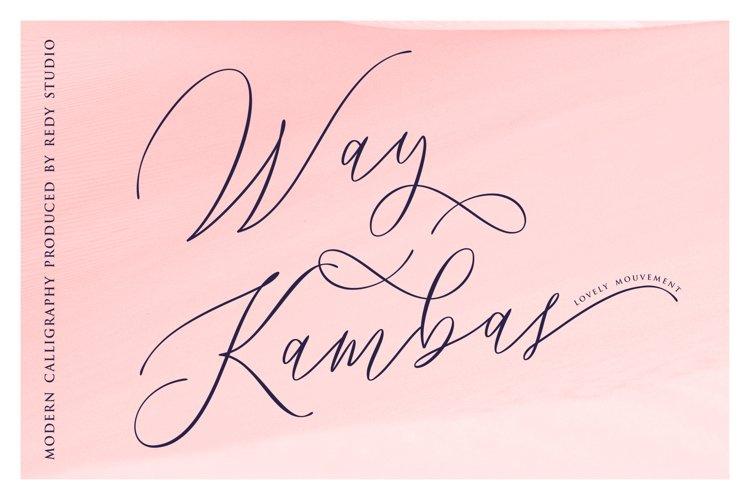 Way Kambas example image 1