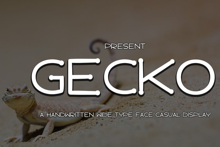 Gecko example image 1