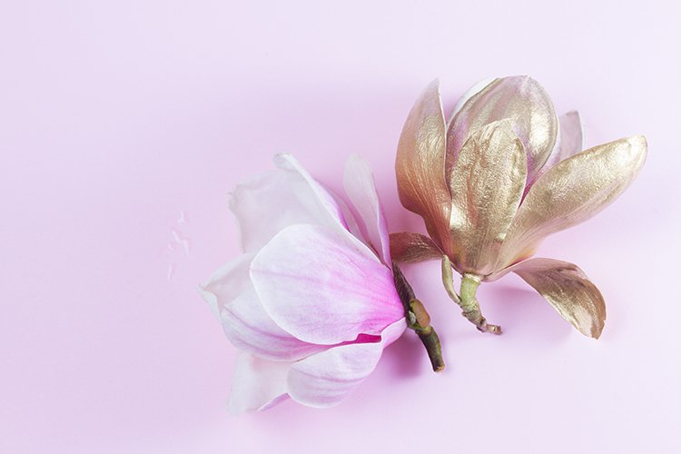 Magnolia Flowers pink ang golden example image 1