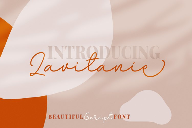 Lavitanie Monoline Script Font example image 1