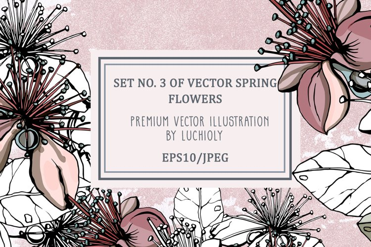 Set No. 3 of vector spring flowers