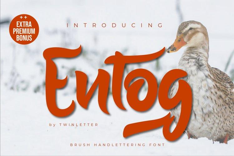 Entog example image 1