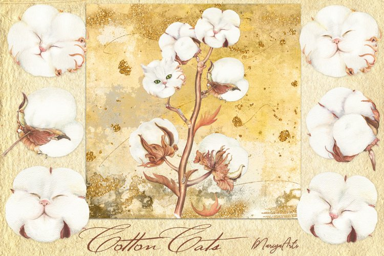 Cotton Boll, Stem, Cat, Modern Farmhouse Watercolor Decor