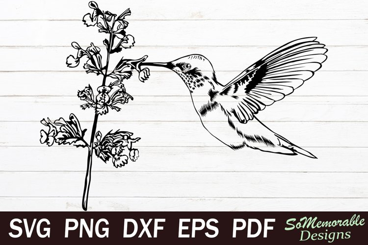 Hummingbird SVG cut file, Hummingbird svg design