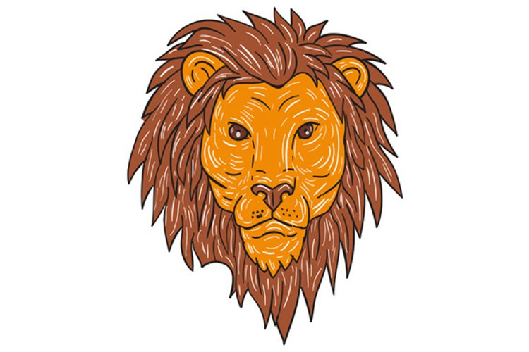 Male Lion Big Cat Head Drawing example image 1