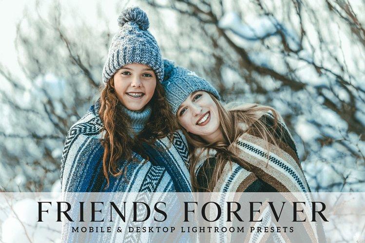 Friends Forever Mobile & Desktop Lightroom Presets example image 1