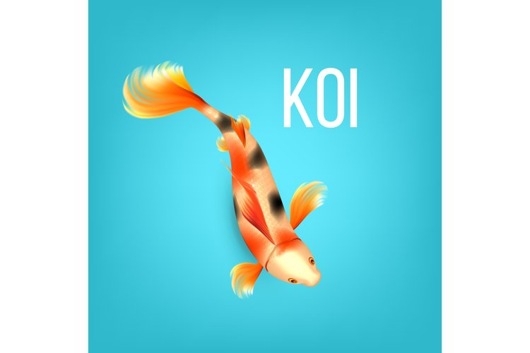 Oriental Golden Koi Fish With Black Spots Vector example image 1