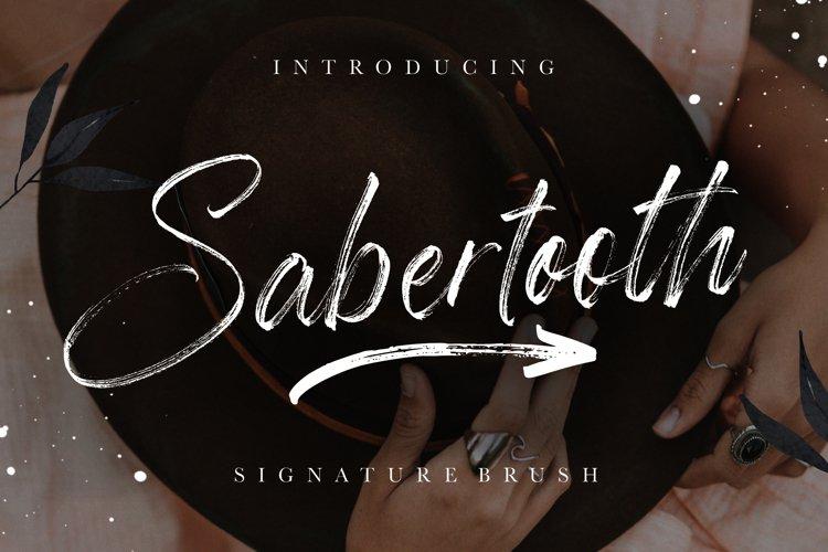 Sabertooth Signature Brush example image 1