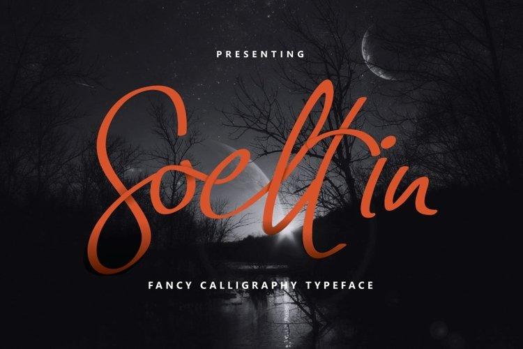 Web Font Soeltin Typeface example image 1