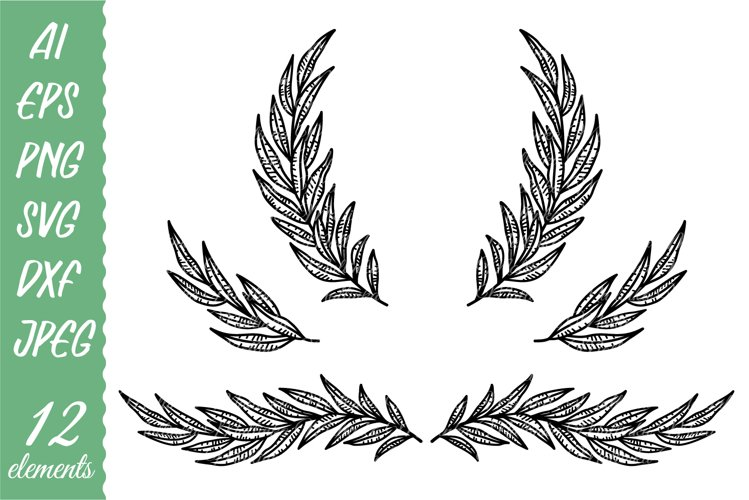 Eucalyptus branches and wreaths. Fill and outline. example image 1