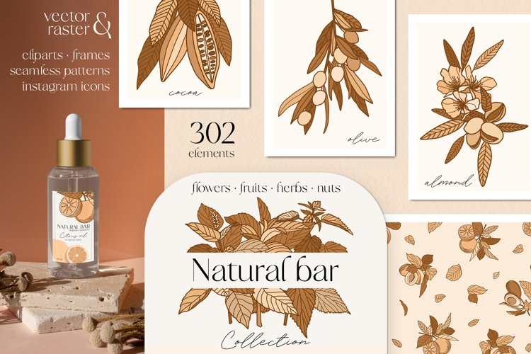 Cosmetic flowers, fruits, herbs, nuts vector clipart, frames