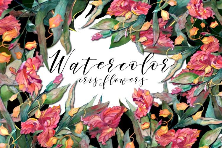 Watercolor iris flowers set. example image 1