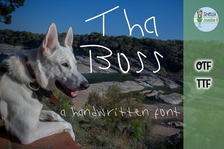 SCI_Tha BossFont example image 1