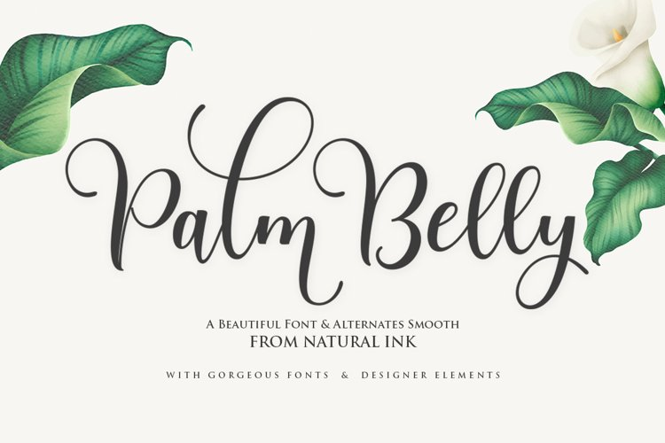 Palm Belly Script example image 1