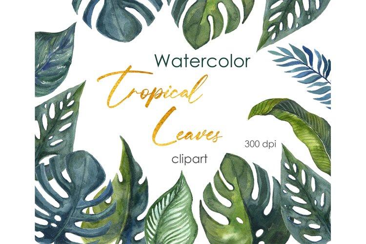 Watercolor Clipart. Tropical Floral. Digital Summer clipart