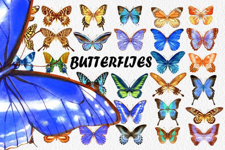 34 Hand-Painted Watercolor Butterflies example image 1