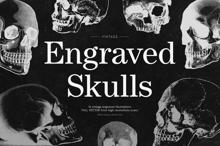 Engraved Skulls Illustrations