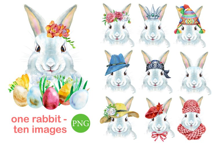 Watercolor white rabbit example image 1