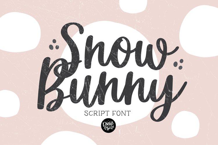 SNOW BUNNY a Pretty Script Font example image 1