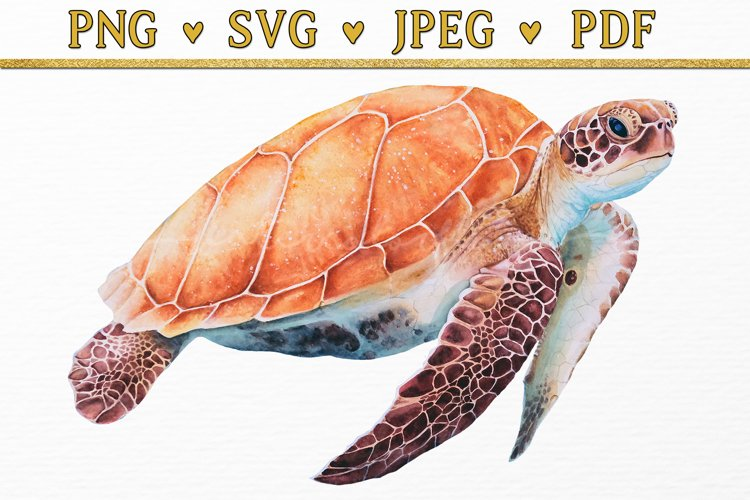 Sea Turtle Watercolor Clipart