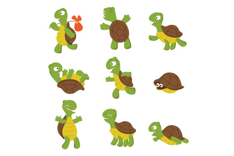 Cartoon turtle. Cute tortoise wild animal vector characters