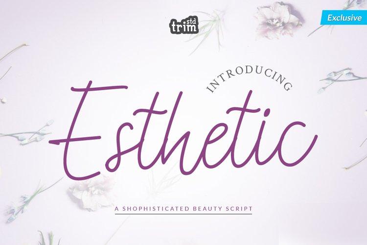Esthetic - Beauty Script Font example image 1