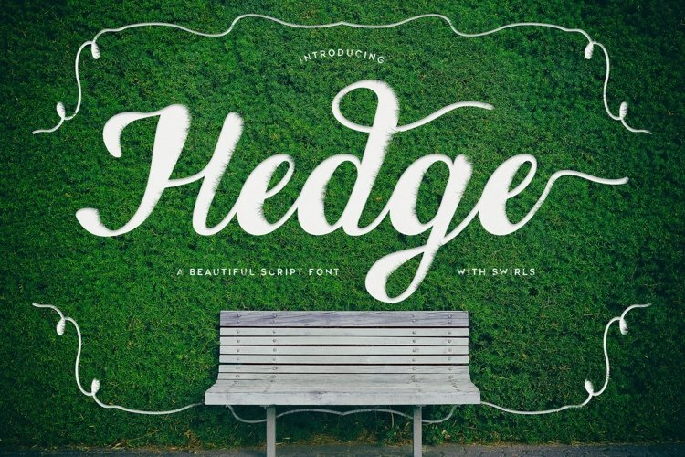 Web Font Hedge example image 1