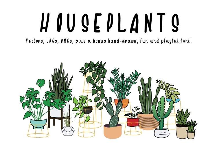 Houseplants Bundle