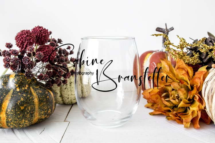 Mockup - Wine Glass Fall Drinkware Photography